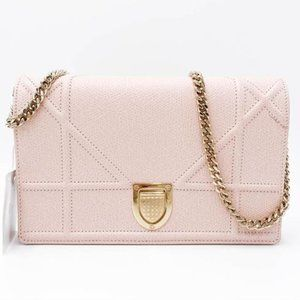 Wallet on Chain Grained Calfskin Diorama Pouch Ros